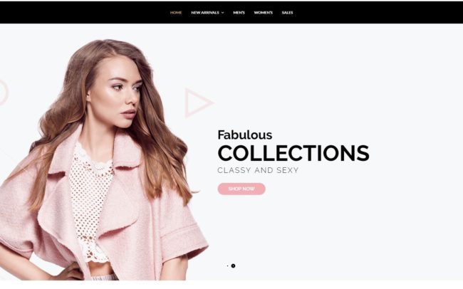 1 Website Design 1 Fashion shop web development